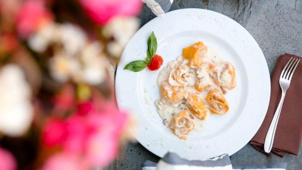 note-di-cucina-suggerimento-dello-chef-7351f